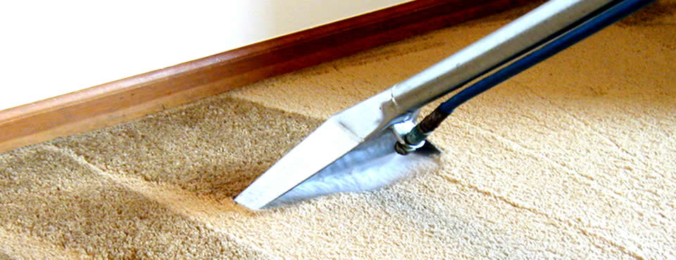 Mistakes To Avoid When Hiring a Carpet Cleaning Company in Ilford